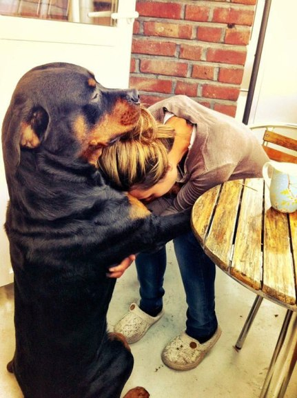 cute-dogs-hugging-humans-4
