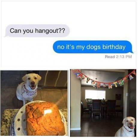 dog-birthday-party-text